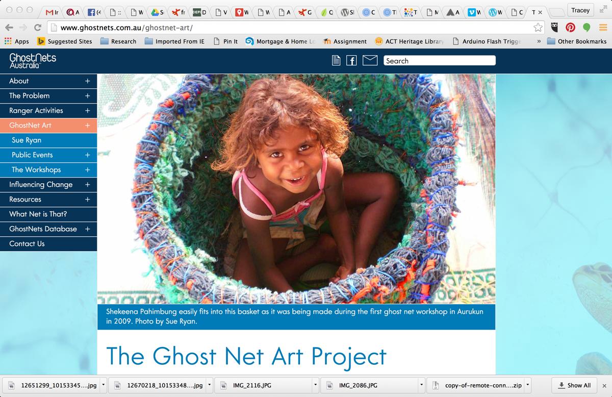 Screen shot from Ghost Nets website