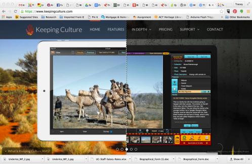 Screen shot from Keeping Culture website
