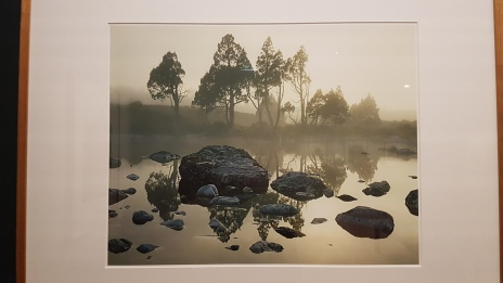 Dombrovskis: Journeys into the Wild. Photo by Tracey M Benson