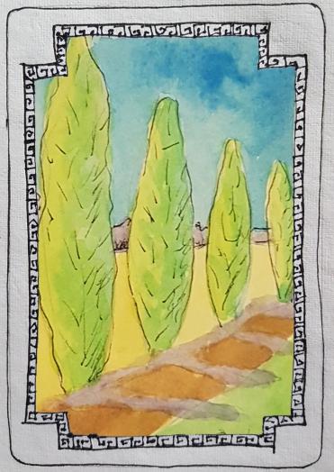 Sacred Trees - Cypress