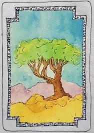 Sacred Trees - Myrrh