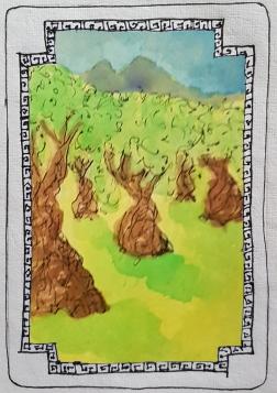 Sacred Trees - Olive