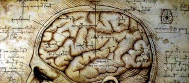 1510, first drawing of the human brain by Leonardo Da Vinci
