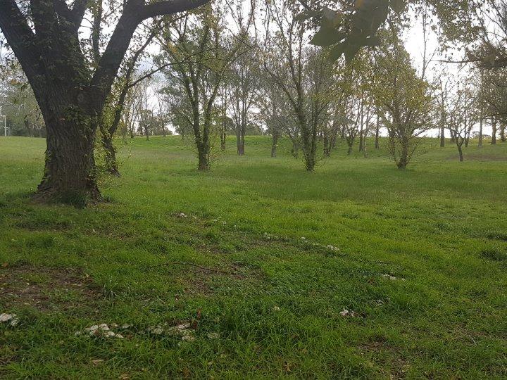 Ginninderry Creek Walk