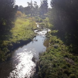 Ginninderra Creek